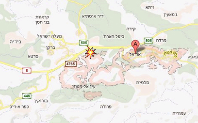 אזור התאונה (צילום: google maps) (צילום: google maps)