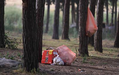מראות קשים. זבל שהשאירו מטיילים החג הזה ביער בן שמן  (צילום: גיל יוחנן) (צילום: גיל יוחנן)