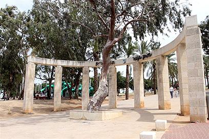 הפארק שבו הותקף ניצול השואה (צילום: עופר עמרם) (צילום: עופר עמרם)