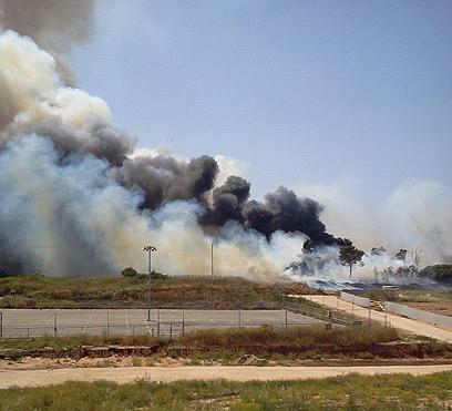 השריפה ליד בית הספר הדסים בשרון (צילום: דליה שובל-שקד)