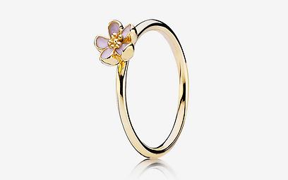 גם זו אפוצייה לטבעת אירוסין. פנדורה 1,495 שקל (צילום: יוהן פטרסון) (צילום: יוהן פטרסון)