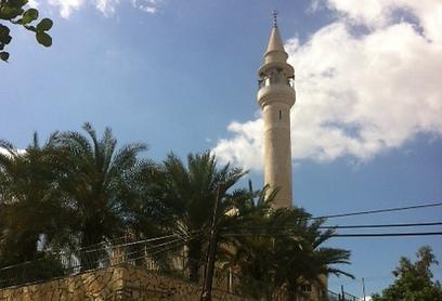 המסגד בכפר אום אל-קוטוף (צילום: אתר alarab.net) (צילום: אתר alarab.net)