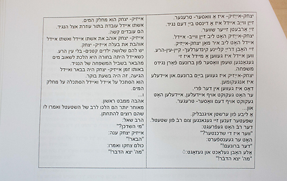 """המרת משפטים מיידיש לעברית. """"סבא וסבתא התלהבו"""" (צילום: אוהד צויגנברג) (צילום: אוהד צויגנברג)"""