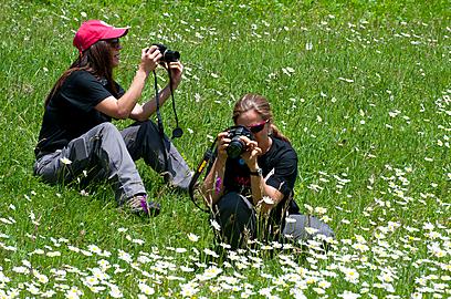 לפני שקונים מצלמה חשוב לדעת עליה הכל (צילום: איה בן עזרי) (צילום: איה בן עזרי)