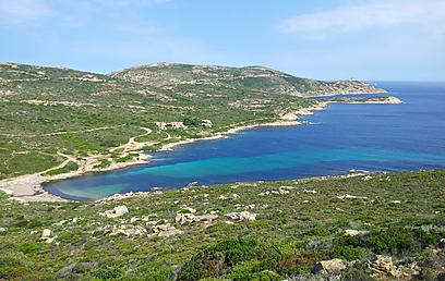 חורש ים-תיכוני מוקף בים. מפרץ בחבל באלאניה (צילום: זיו ריינשטיין) (צילום: זיו ריינשטיין)