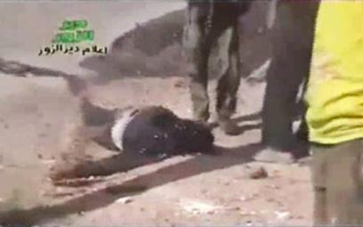 כוחות המשטר הגבירו את הלחימה. מורד סורי הרוג (צילום: AP) (צילום: AP)
