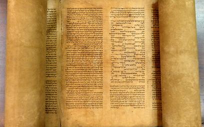 חמישה תגים מעל האות צ'. ספר התורה האיטלקי ( ) ( )