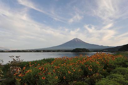 הר הגעש פוג'י הוא ההר הגבוה ביותר ביפן ומתנשא לגובה של 3,776 מטרים. ההר ואגם קָאווָאגוּצִ'י שלמרגלותיו מתמודדים על הזכות להפוך לאתר מורשת עולמית של UNESCO (צילום: AFP) (צילום: AFP)