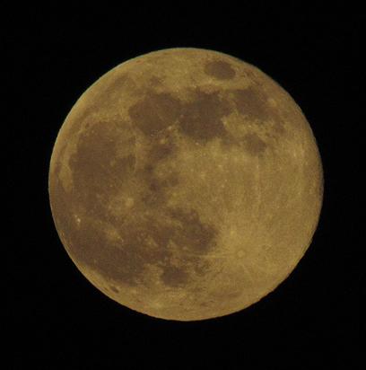 הירח כפי שנראה מרחובות, הערב (צילום: חן גוסלר) (צילום: חן גוסלר)