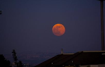 בכפר סבא הירח נצבע באדום (צילום: אייל רוכסר) (צילום: אייל רוכסר)