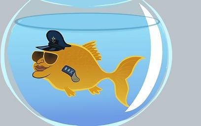 דג חלוץ - דן חלוץ. דגי זהב מסכנים את המעיינות (איור: שרוטונים) (איור: שרוטונים)