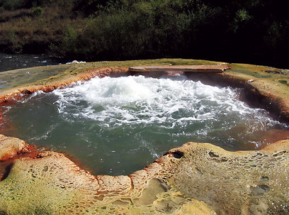 מעיינות חמים בזואר על גדת נהר התותחון (ירון וייס, טבע הדברים) (ירון וייס, טבע הדברים)