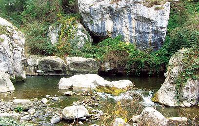 בריכה טבעית בעמק קניון קרקר (ירון וייס, טבע הדברים) (ירון וייס, טבע הדברים)