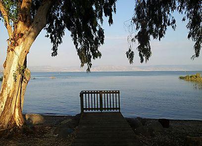 אחת הנק' היפות והמושקעות בשביל. חוף חוקוק (צילום: זיו ריינשטיין) (צילום: זיו ריינשטיין)