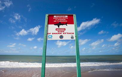 זהירות מכרישים. חוף בואה ויאגם ברסיפה (צילום: רויטרס) (צילום: רויטרס)
