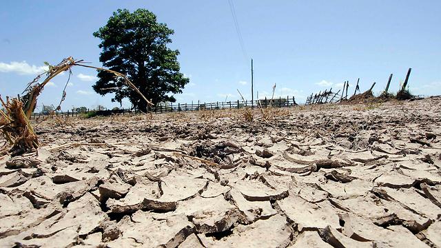 """מה זה השטויות האלה """"התחממות גלובלית""""? (צילום: רויטרס) (צילום: רויטרס)"""