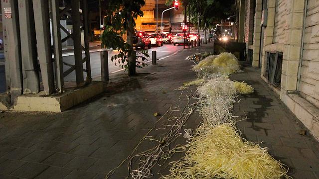 Trash in south Tel Aviv streets (Photo: Ido Erez)