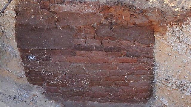 """מראה חיצוני של החומה מן המאה ה-8 לפנה""""ס בתוך הסוללה (צילום: המכון לארכיאולוגיה, אוניברסיטת ת""""א) (צילום: המכון לארכיאולוגיה, אוניברסיטת ת"""