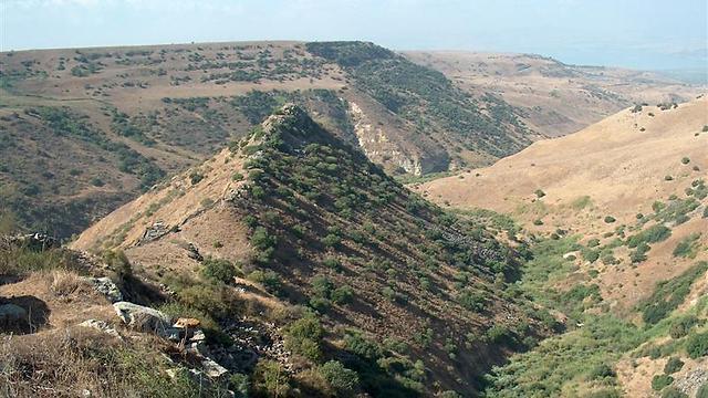 כמו דבשת גמלים. ההר שעליו נבנתה גמלא (צילום: עומר יגאל) (צילום: עומר יגאל)