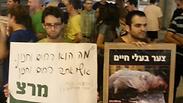צילום: נילי חן-אבידן