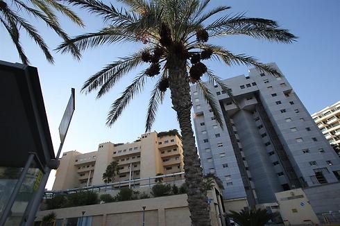 רחוב הרצל רוזנבלום בתל-אביב. מחיר ממוצע של 5 מיליון שקל (צילום: ירון ברנר)