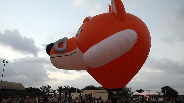 פסטיבל הכדורים הפורחים באשכול. בוטל (צילום: רועי עידן) (צילום: רועי עידן)