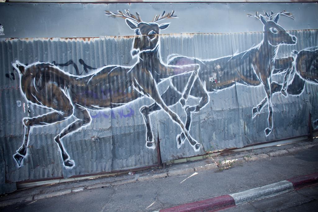 ציור האיילים של dede bandaid (צילום: אילן ספירא)