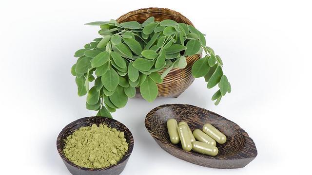 מטפל בעיקר בהקלת תסמיני סוכרת ודלקות (צילום: shutterestock) (צילום: shutterestock)