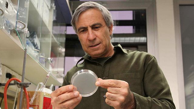 Professor Ehud Keinan (Photo: Ido Erez)