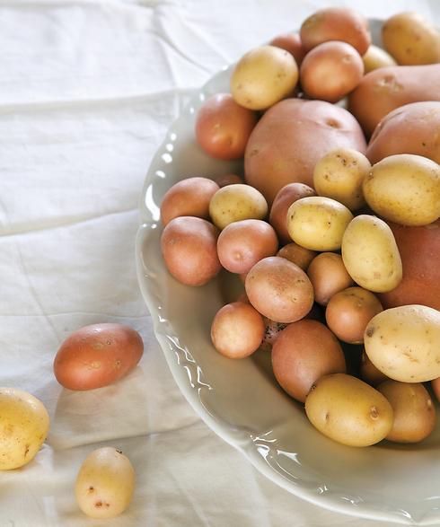 כפרה עליהם. תפוחי אדמה (צילום: דניאל לילה) (צילום: דניאל לילה)