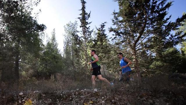 """רץ עשרות אלפי ק""""מ. תלם יהב בריצת טיול בהר איתן (צילום: אלכס קולומויסקי) (צילום: אלכס קולומויסקי)"""