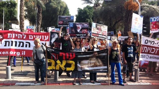 """הפגנה בת""""א נגד חברת """"זוגלובק"""" (מרינה גרודינסקי, אנונימוס) (מרינה גרודינסקי, אנונימוס)"""