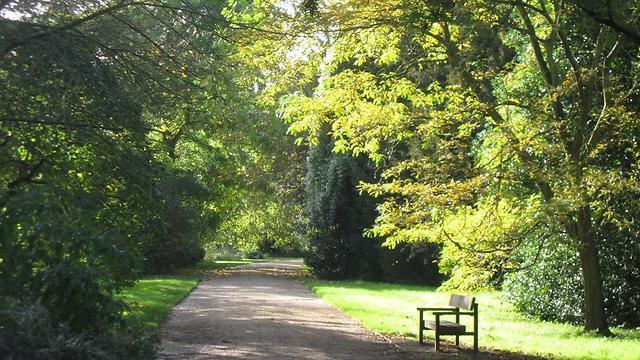 אוקספורד של ק.ס לואיס. מקום טוב לכתוב בו (צילום: מיה וינשטוק) (צילום: מיה וינשטוק)