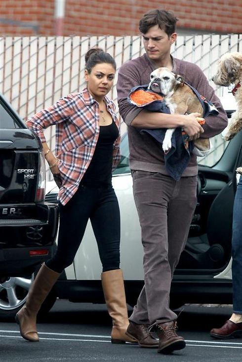 אשטון קוצ'ר, מילה קוניס והכלב. בקרוב תינוק? (צילום: splashnews) (צילום: splashnews)