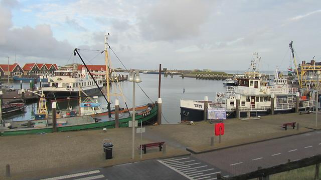 הנמל של טקסל. אופי עצמאי (צילום: יובל מן) (צילום: יובל מן)