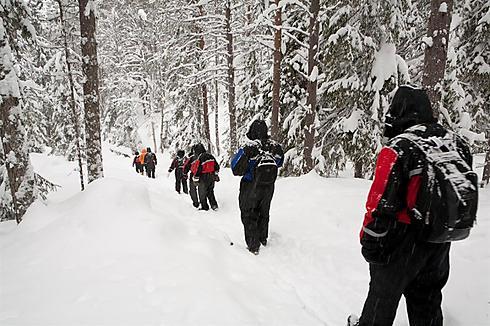 יוצאים לדרך (צילום: יאיר שטיינמץ) (צילום: יאיר שטיינמץ)