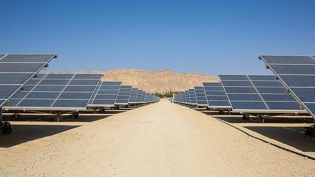 שדה סולארי בקיבוץ קטורה (צילום: נועה מגר) (צילום: נועה מגר)
