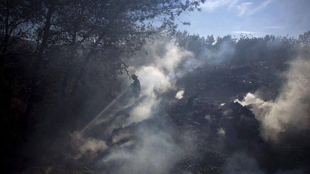 השריפה בכרמל ב-2010. ההנחיות לא יושמו (צילום: AP)