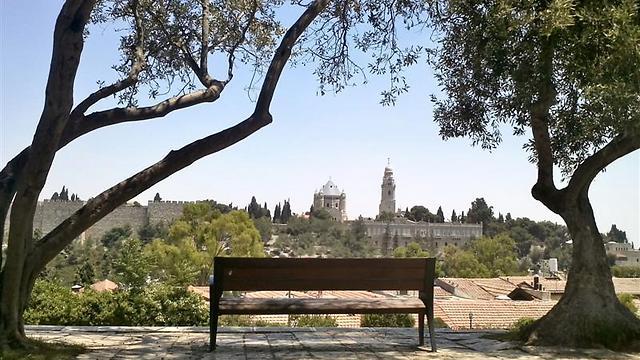 נוף העיר העתיקה מימין משה (צילום: משה פרנס) (צילום: משה פרנס)