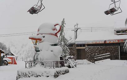 Snow in Golan Heights (Photo: Avihu Shapira)