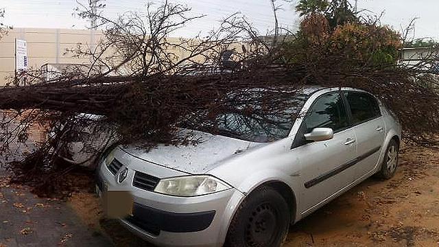 סערה בגבעת שמואל (צילום: יניב נבון) (צילום: יניב נבון)