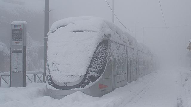 Light Rail (Photo: Ilya Kreins)