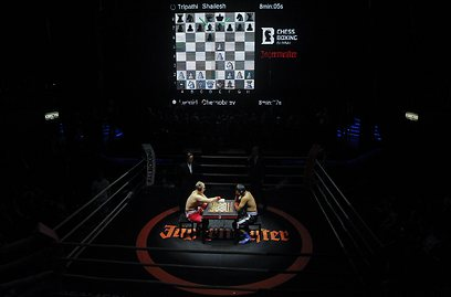 שחמט-אגרוף. שילוב של מח וכח (צילום: רויטרס) (צילום: רויטרס)
