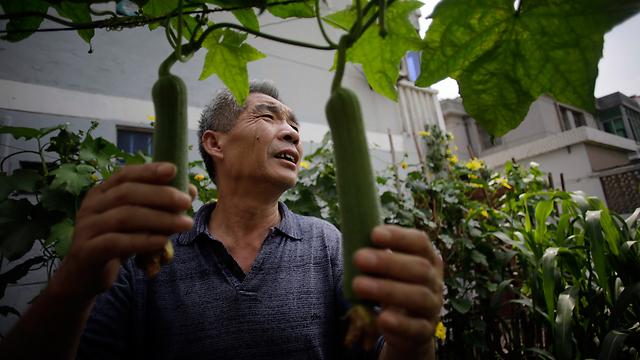 """""""מקווה מאוד שלא יעלו את גיל הפרישה"""", דונג לינהו מסין (צילום: AP) (צילום: AP)"""