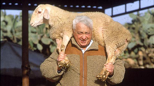 Ariel Sharon at his beloved Sycamore Ranch in the Negev (Photo: Yossi Rot) (Photo: Yossi Rot)