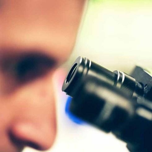 אילוסטרציה: מפתחים מיקרוסקופים (צילום: jupiter) (צילום: jupiter)