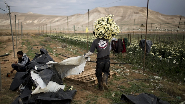 Palestinians want the Jordan Valley as part of a future state for its fertile farmland (Photo: AP)
