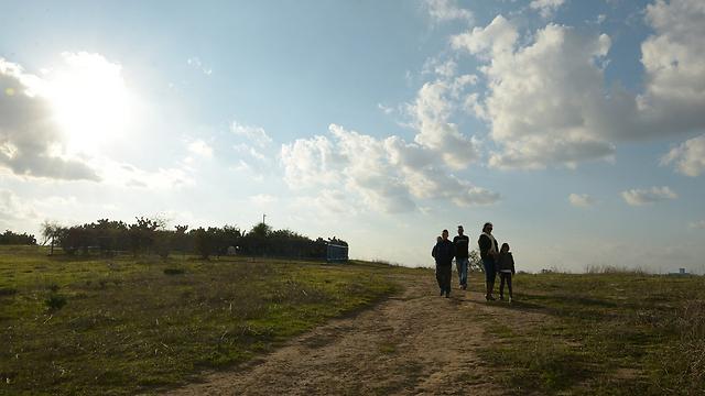 מטיילים בחוות השקמים, היום (צילום: אבי רוקח) (צילום: אבי רוקח)
