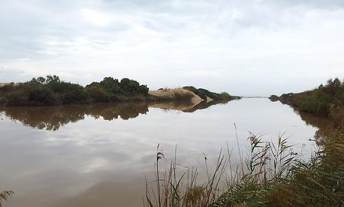 נחל אלכנסדר. דירה בקירבת השמורה עולה 1.45 מיליון שקל (צילום: גיא קהילה)