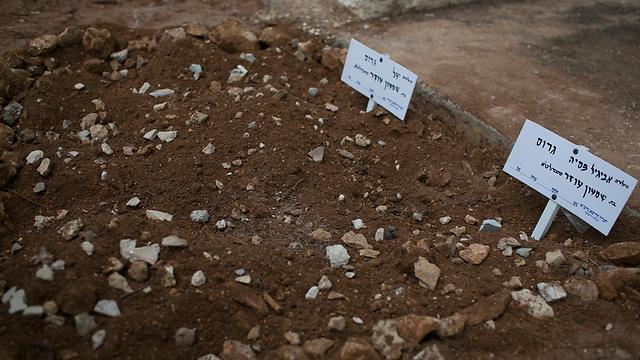 הקברים של הבנות הקטנות (צילום: אוהד צויגנברג)